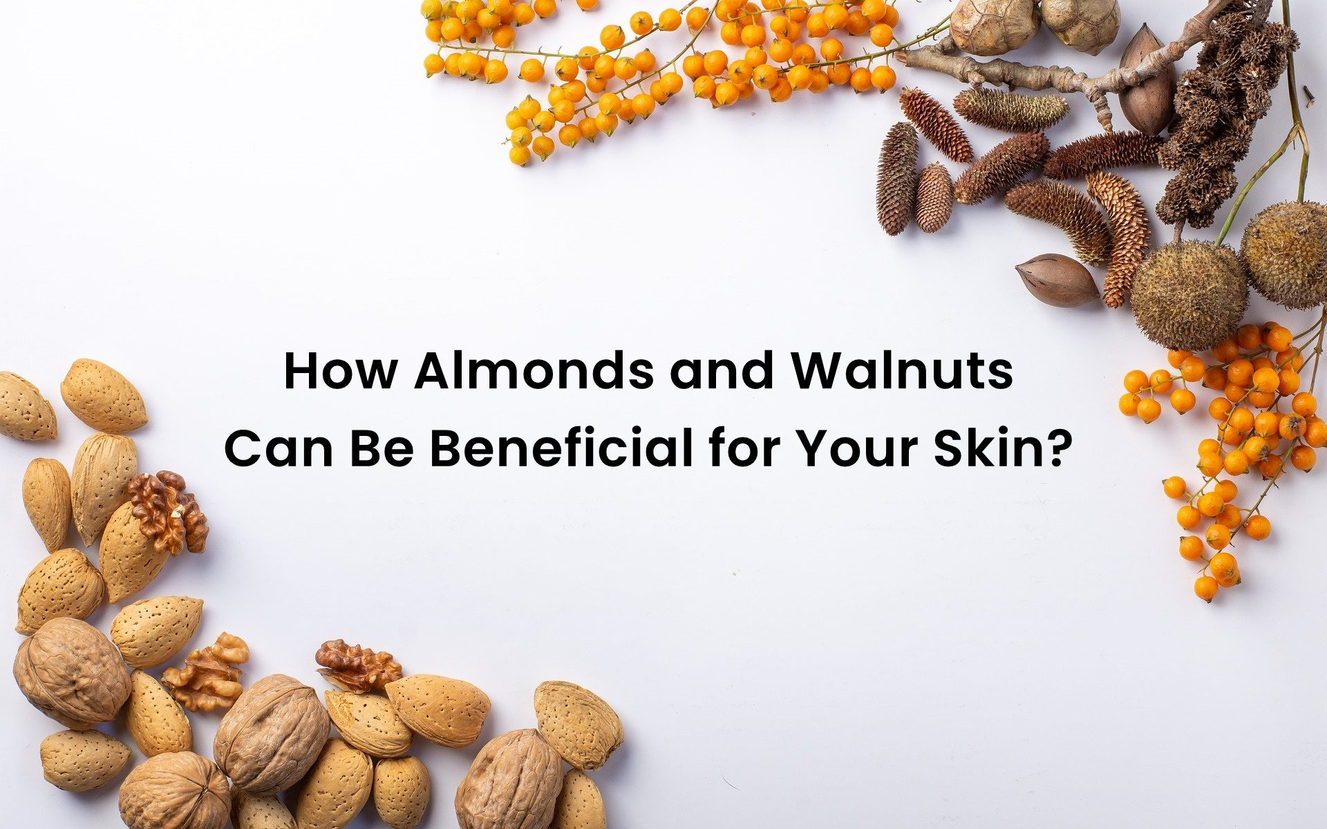 How Almonds and Walnuts Can Be Beneficial for Your Skin?